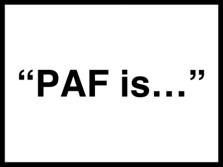Metaphors Of Everyday Life Many Lives >> A Paf Is Metaphors In Everyday Life Presidential Fellowship